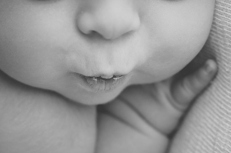 newborn pictures--8